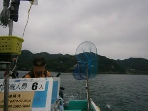 江戸川区 瑞江 釣り シロギス