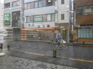 江戸川区 瑞江 台風 メガネ