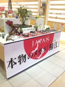 江戸川区 福井