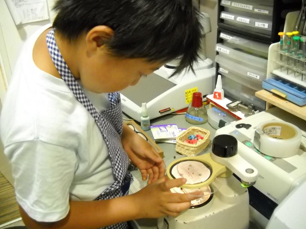 江戸川区 メガネ 男子 職場 体験 キッザニア アドミラル