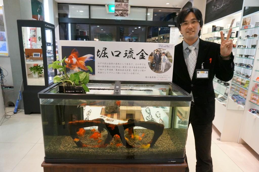 東京都 江戸川区 メガネ専門店 観賞魚フェア