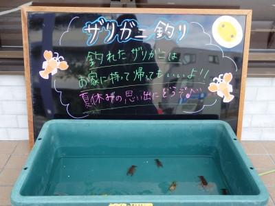 東京 都内 江戸川区 こどもメガネ ザリガニ釣り