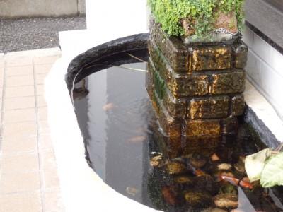 東京 都内 江戸川区 瑞江 スポーツサングラス 度付き 釣り用