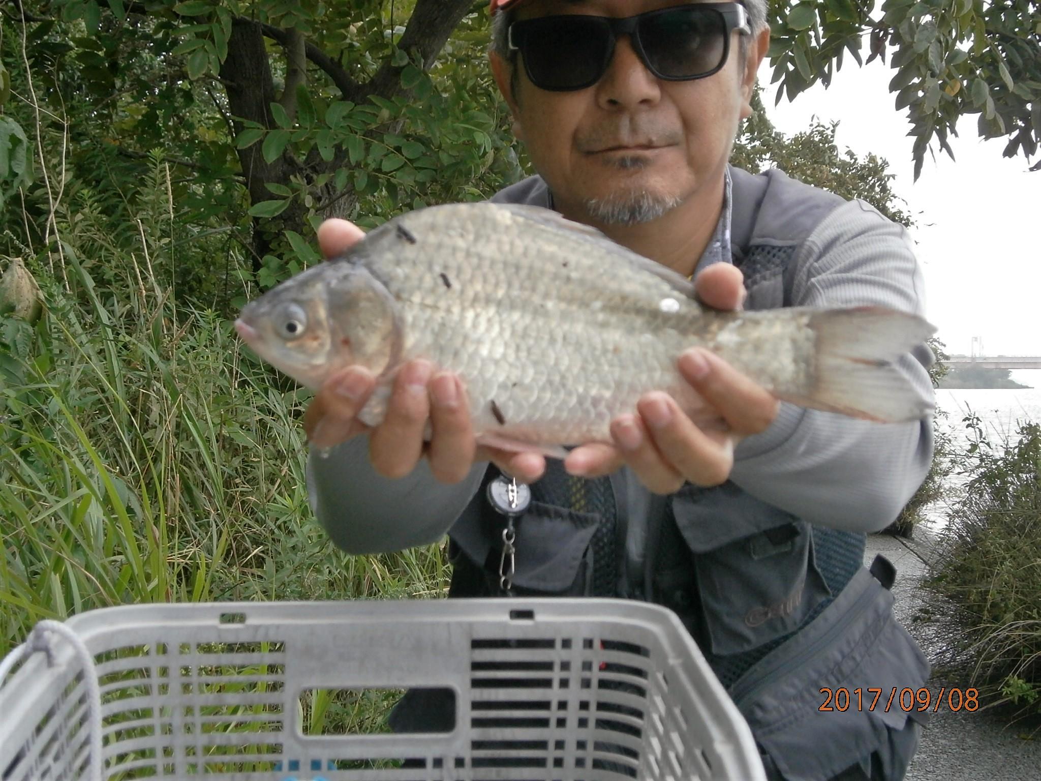 メガネ 釣り用サングラス 江戸川