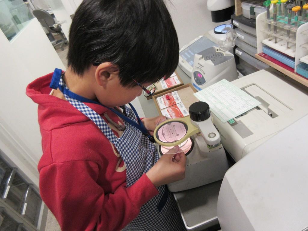こどもメガネ 子供眼鏡 メガネ作り体験 江戸川区 船堀 口コミ 両眼視機能 プリズム検査