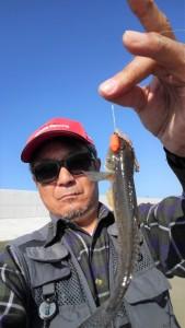 メガネのブログ 釣りのブログ 趣味のブログ 江戸川