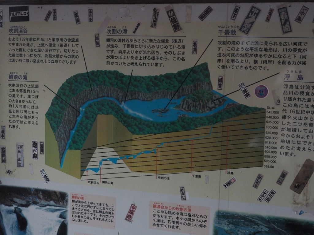東京都 江戸川区 船堀 メガネ 両眼視 吹割の滝