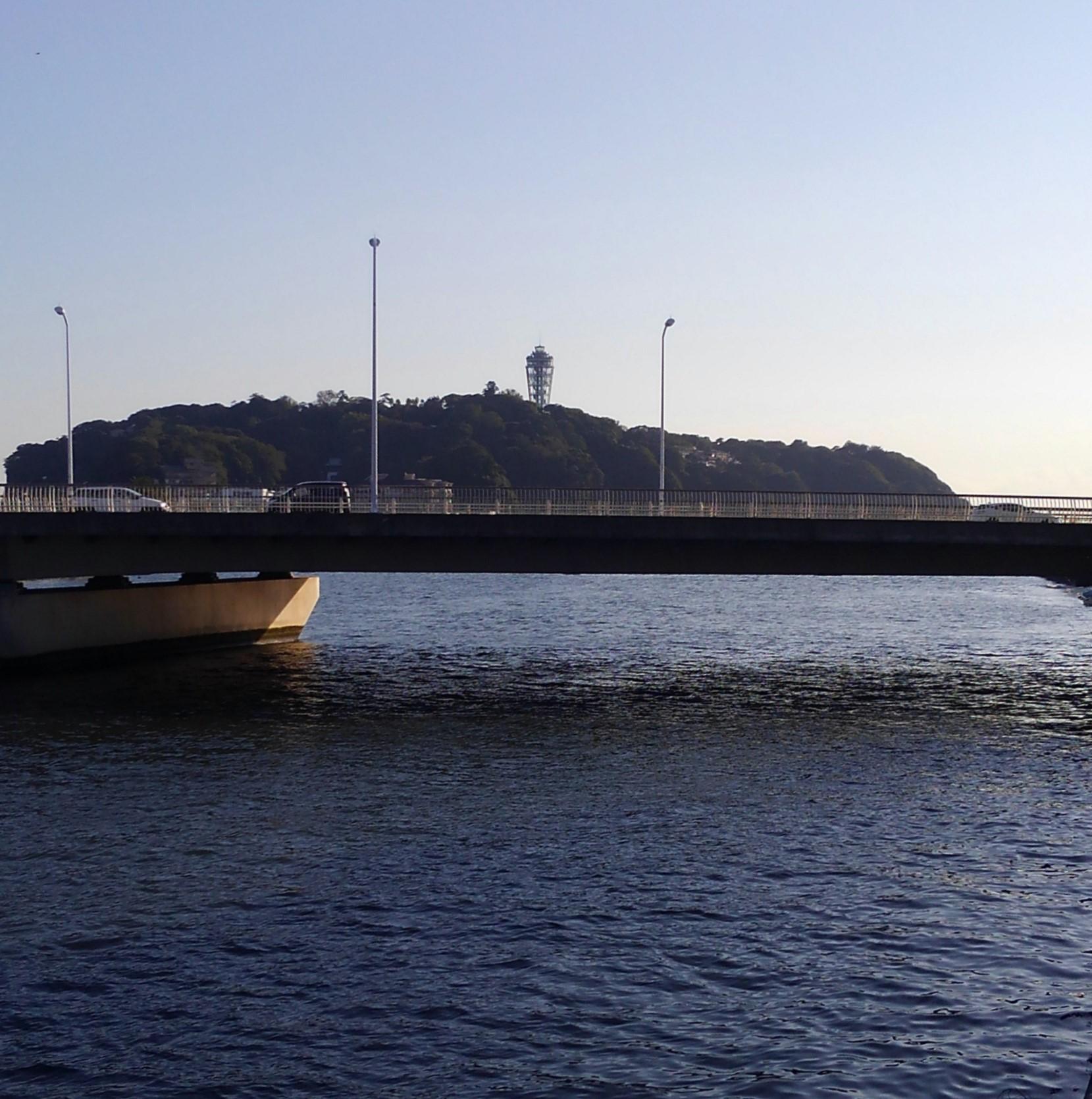 湘南 メガネ 江戸川