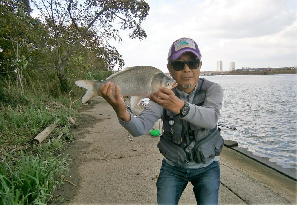江戸川で釣り 江戸川の釣り情報 江戸川区のメガネ
