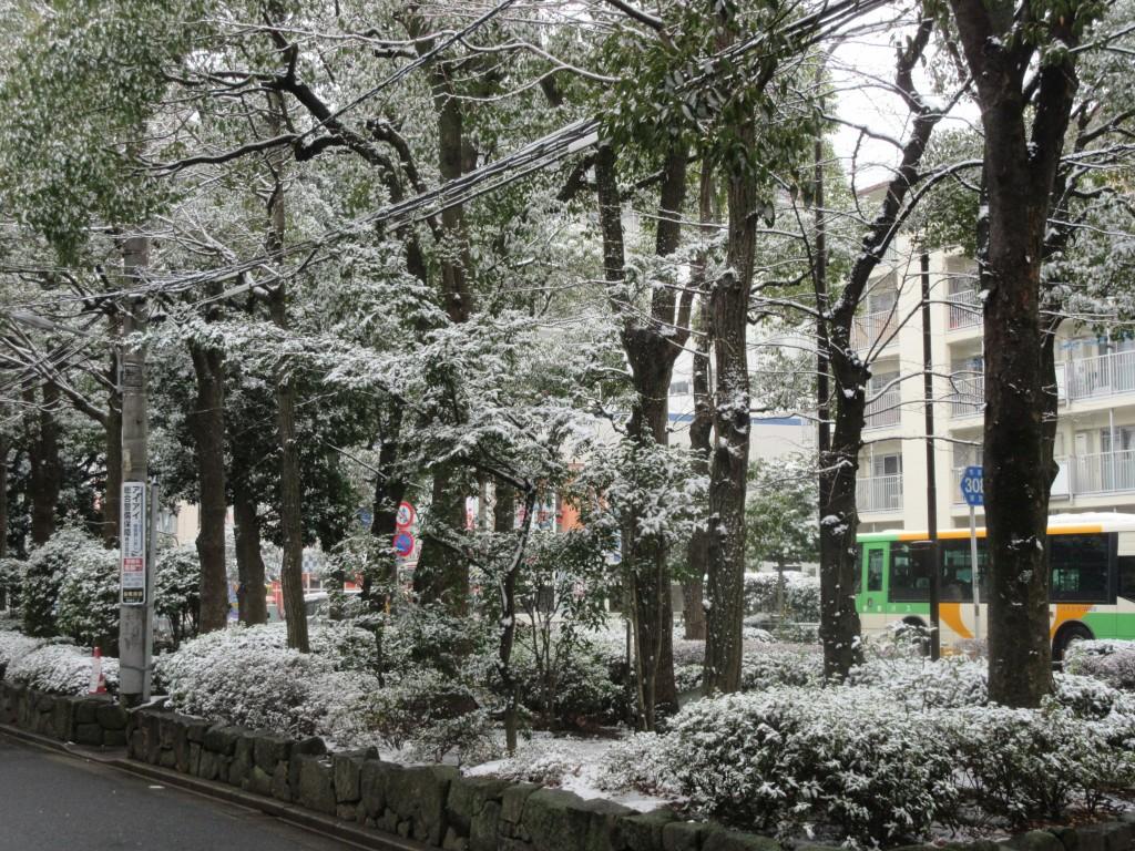 江戸川区 メガネ パーソナルカラー診断 視力測定 コンタクトレンズ