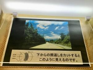 偏光レンズ サングラス Kodak TALEX