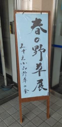 眼鏡ブログ メガネのブログ 江戸川