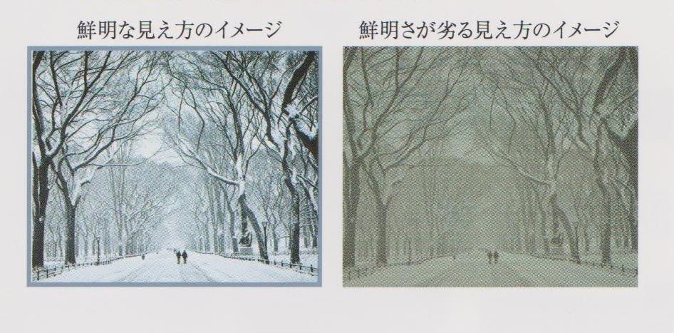 コンタクトレンズ 東京 都 江戸川区 船堀 メガネ 視力検査