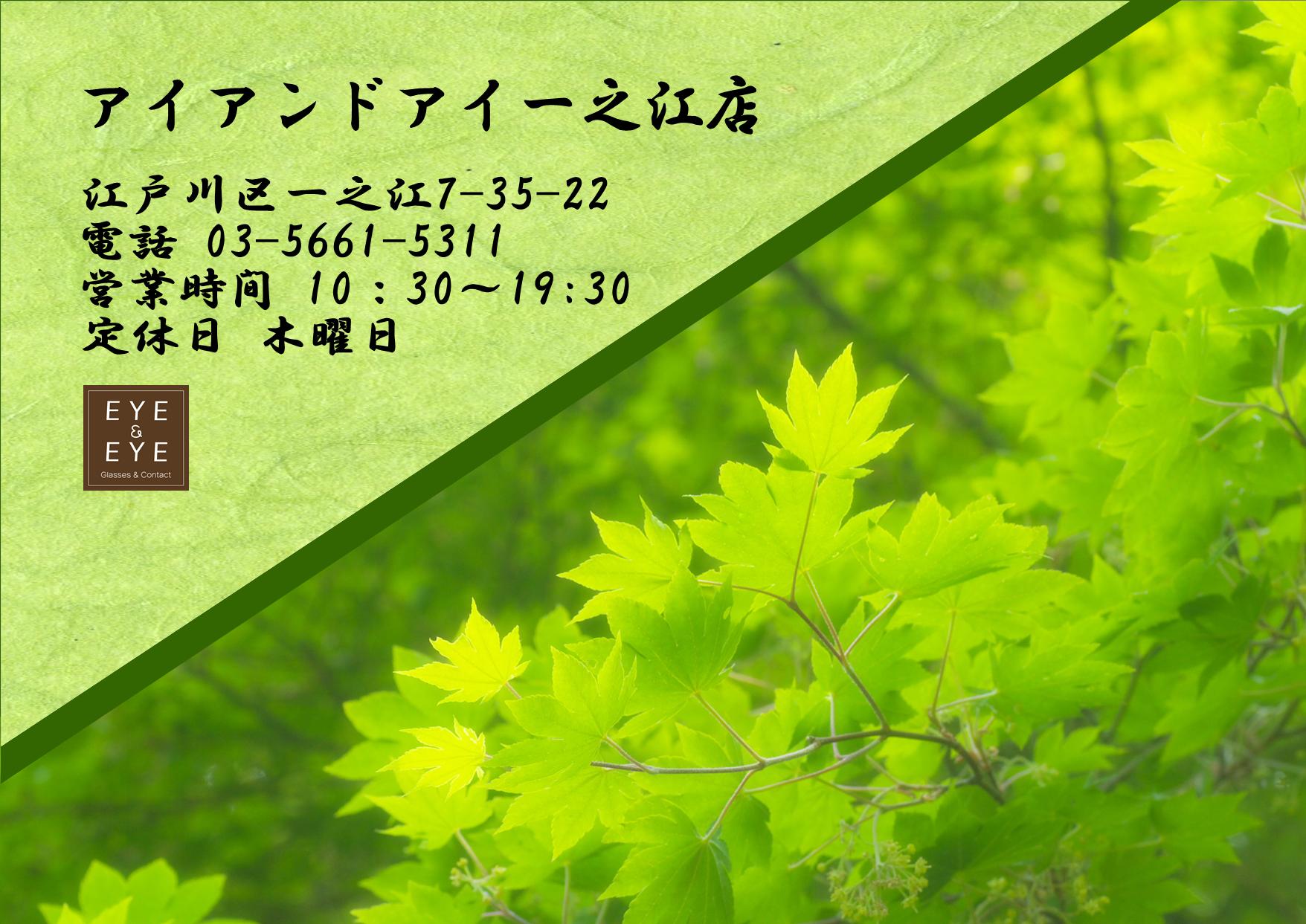東京 都内 江戸川区 一之江 メガネ 国産 鯖江 おすすめ メイドインジャパン 日本