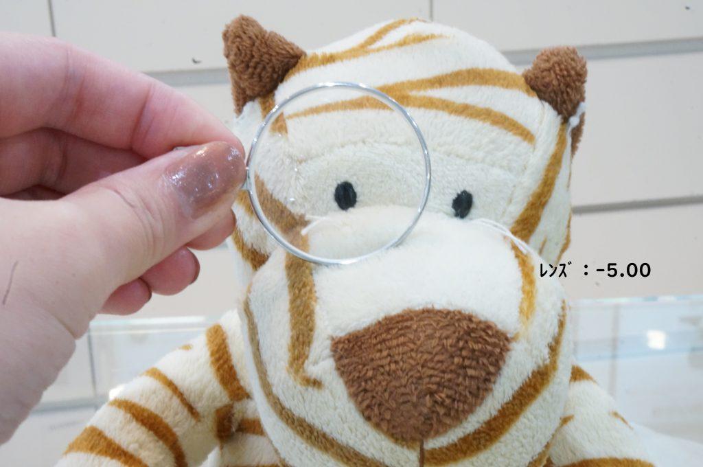 江戸川区,船堀,メガネ,視力検査,東京,目が小さくなる,近視